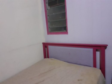 Double Bed Frame  PINK& Purple