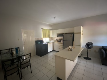 2 Bedroom Apartment (semi-furnished)