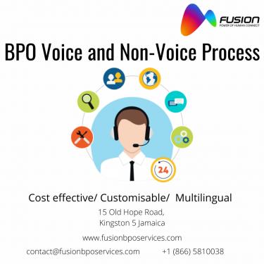 Non - Voice Process In Jamaica