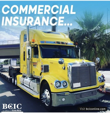 BCIC Motor Vehicle And Property Insurance