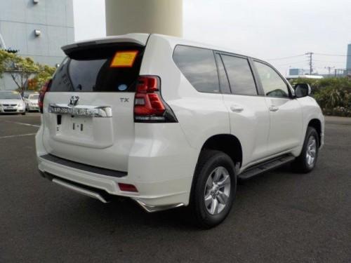 2019 Land Cruiser Prado
