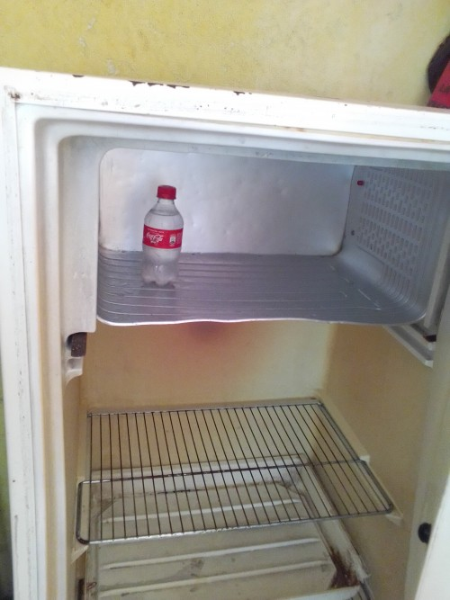 Fridge Fully Function No Fault Freeze Fast 17kng16