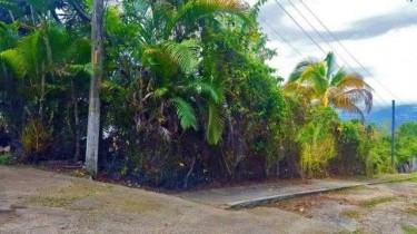 Land For Sale In Jack's Hill Kgn St Andrew Jamaica