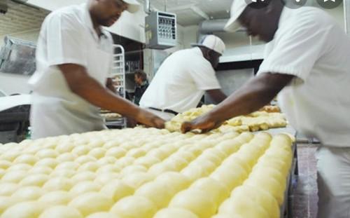 Barkery Company Need Workers