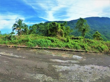 Land For Sale In Stony Hill