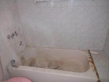 4 Bedroom 3 Bath House