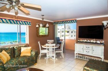 Beautiful Ocean Front & Beach Penthouse