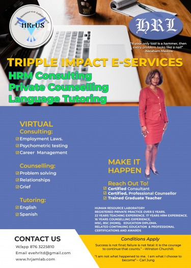 E-Counselling, E-tutoring And Consulting Services
