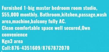 Large Furnished 1 Bedroom Master Studio