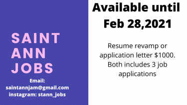 Resume Revamp And Job Applications