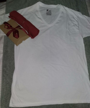 Hanes V-neck White T-shirt And Fruit Of The Loom T