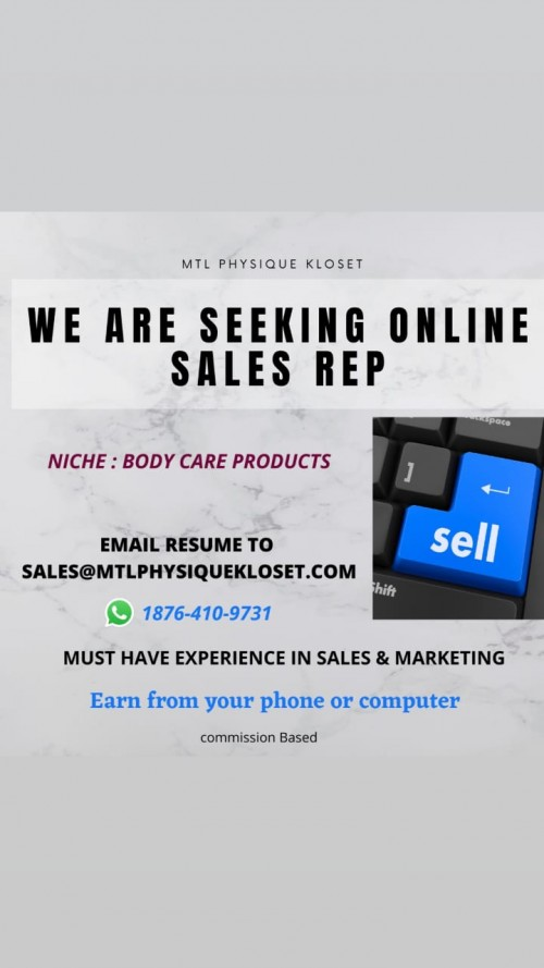 SEEKING ONLINE SALES REP