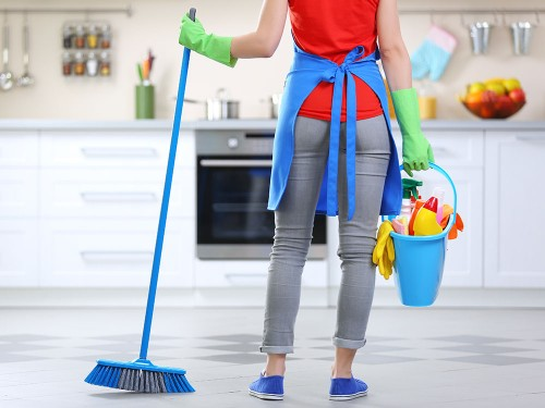 Seeking A Day Worker In Maypen For House Cleaning