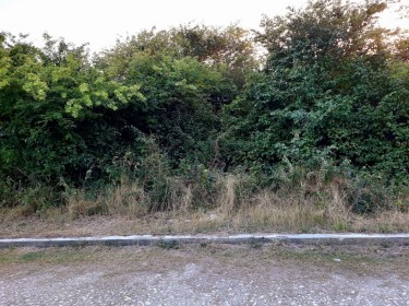 1/4 Acre Of Land For Sale