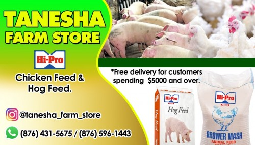 Hog Feed And Chicken Feed