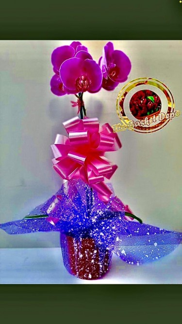 Beautiful Mother's Day Baskets