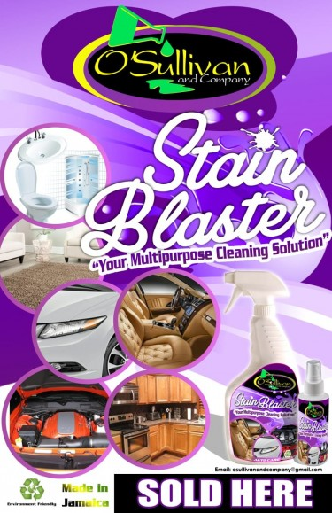 Stain Blaster- Multipurpose Cleaning Solution