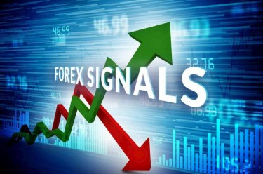 SELLING FOREX AND INDICIES SIGNAL 75% WIN RATE 4K