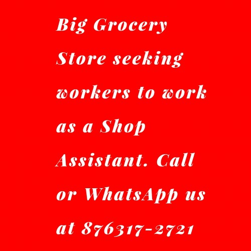 Grocery Shop Assistant Needed