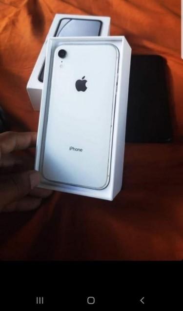 Iphone Xr 64gb No Face I.d No Mic