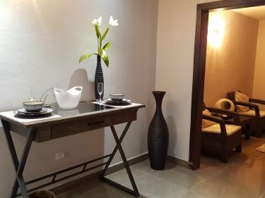 1 Bedroom Kingston Luxury Apt/Pool Fully Furnished