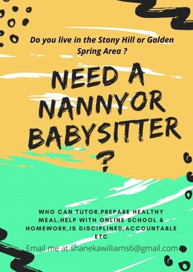 Babysitting/Nanny Services