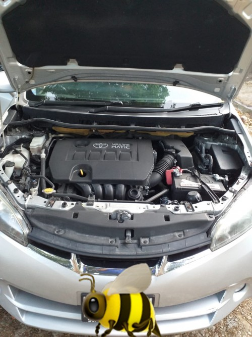 2010 Toyota Wish