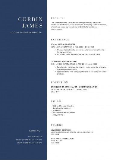 Professional Made Resume And Business Cards