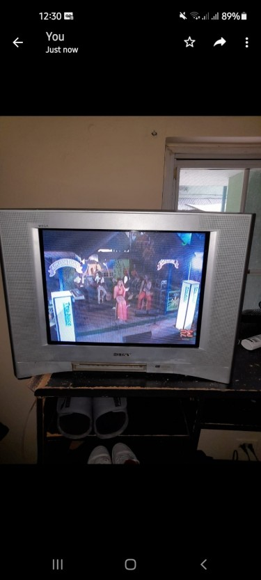 Sony Flat Screen Big Back TV