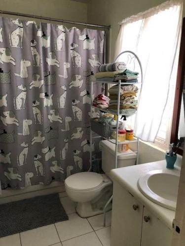 1 Bedroom 1 Bath Apt-13 Merrivale Close, Kgn 8