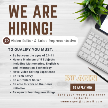 Seeking Video Editor/sales Rep For Video Company