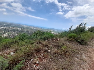 1/4ACRE LOT PLANTATION HEIGHTS
