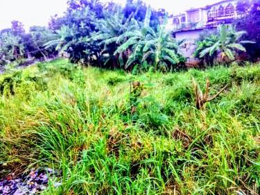 1/8 Acre Endeavor Cres Dunbar Land