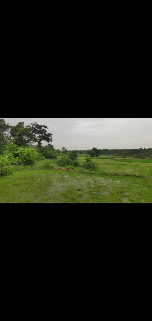 Property Land For Plot Available