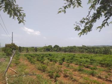 5 Acres Of Prime Farm Land