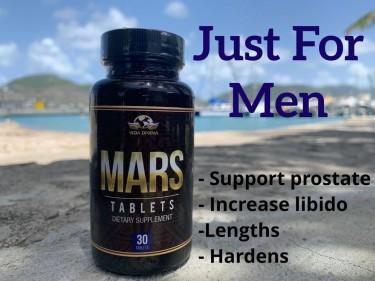 Mars Capsule