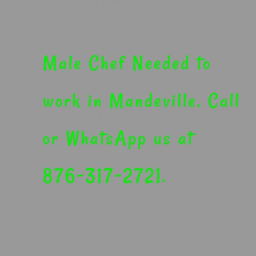 Male Chef Needed In Mandeville