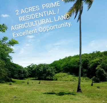 2 ACRES PRIME RESIDENTIAL /AGRICULTURAL LAND
